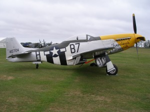 Picture of a yellow-nosed Mustang airplane