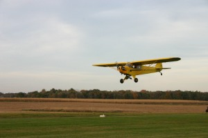 Picture of a yellow Piper Cub plane landing.