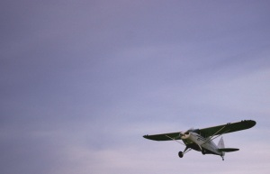 Picture of a Piper Cub airplane in flight.